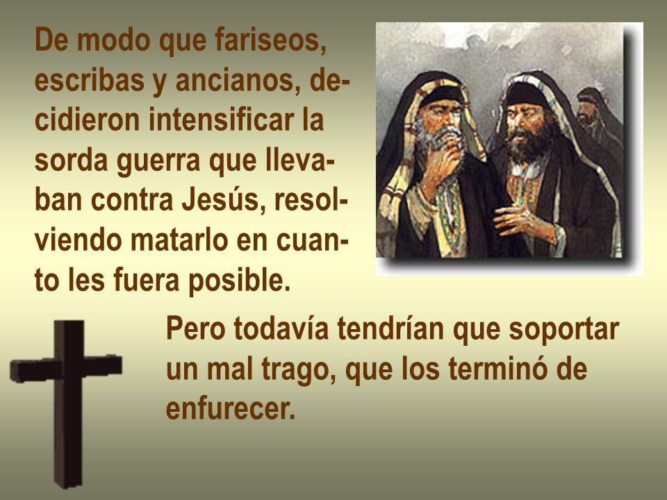 De modo que fariseos, escribas y ancianos, de- cidieron intensificar la. sorda guerra que lleva- ban contra Jesús, resol-