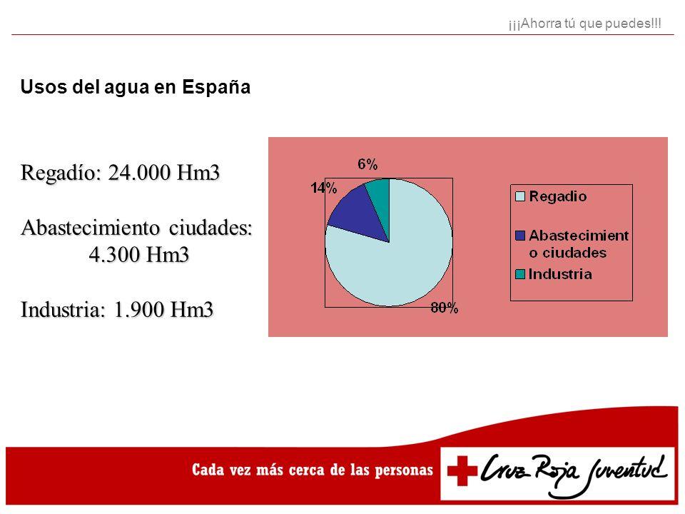 Abastecimiento ciudades: 4.300 Hm3