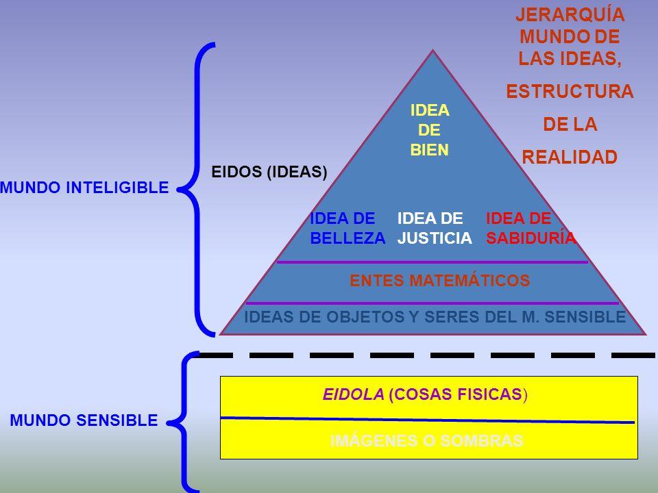 JERARQUÍA MUNDO DE LAS IDEAS, IDEAS DE OBJETOS Y SERES DEL M. SENSIBLE
