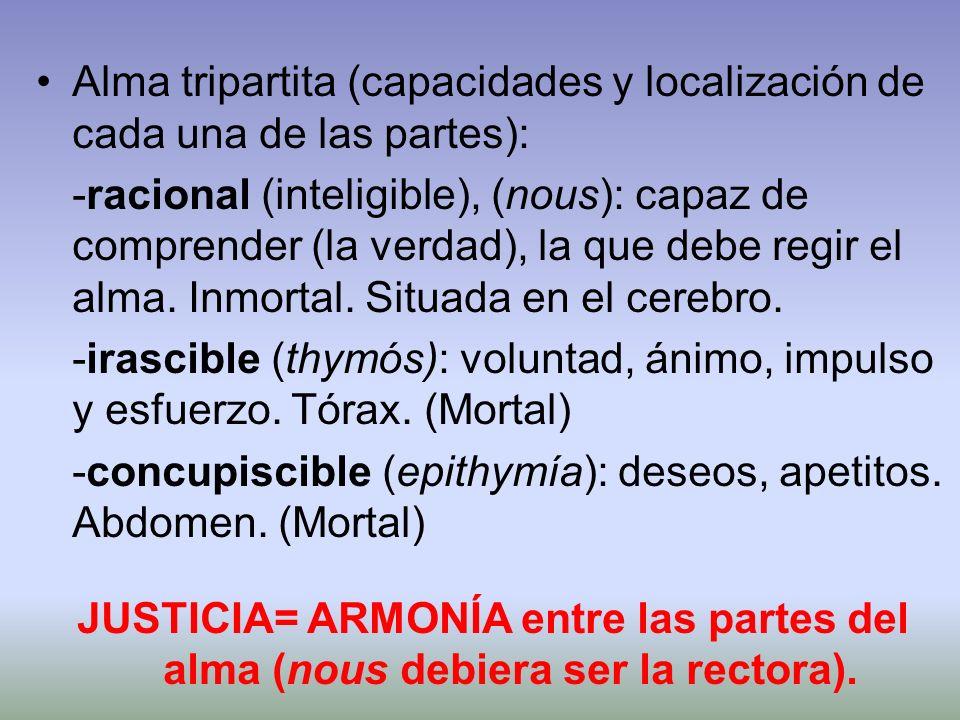 Alma tripartita (capacidades y localización de cada una de las partes):
