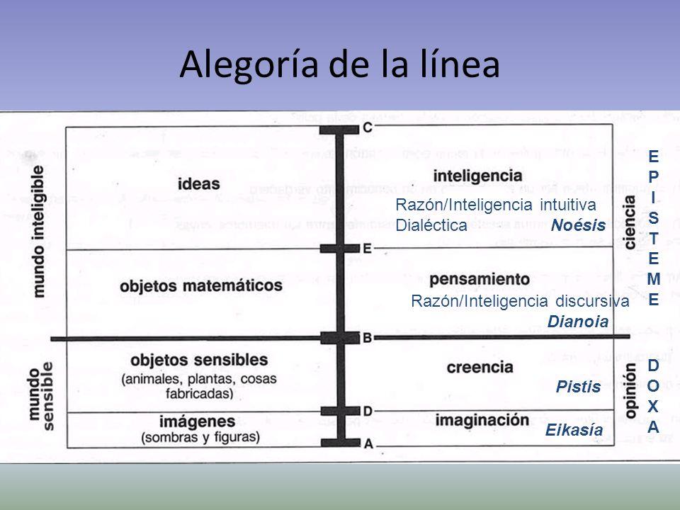 Alegoría de la línea E P I S T Razón/Inteligencia intuitiva