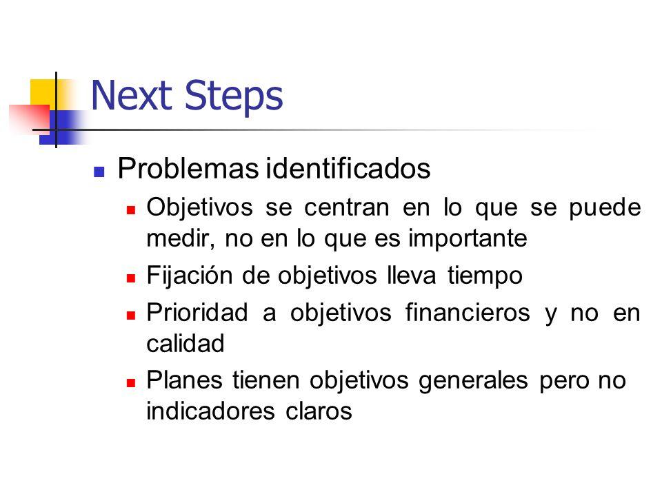 Next Steps Problemas identificados