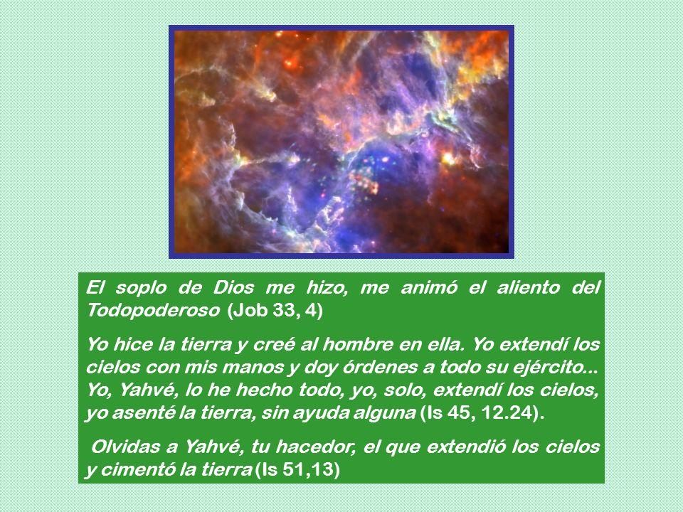 El soplo de Dios me hizo, me animó el aliento del Todopoderoso (Job 33, 4)