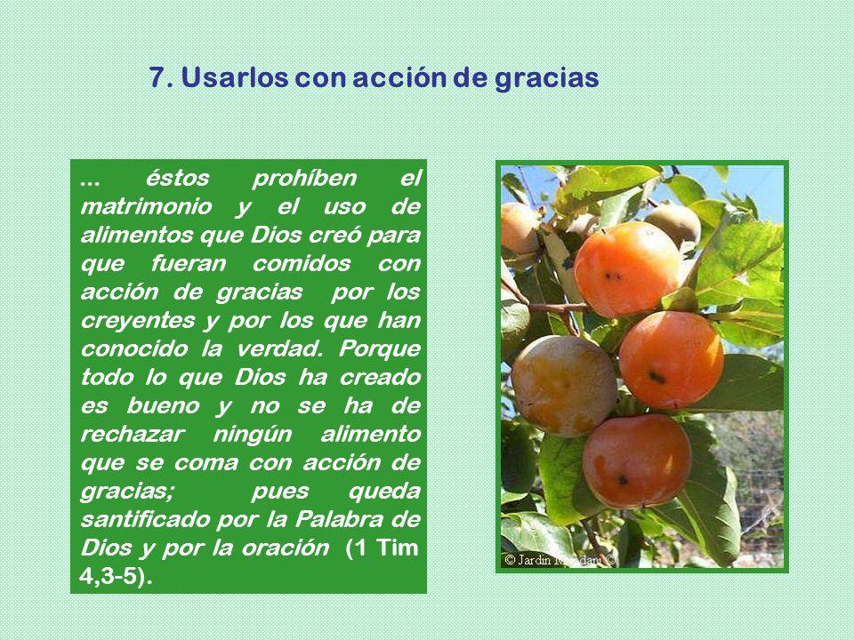 7. Usarlos con acción de gracias