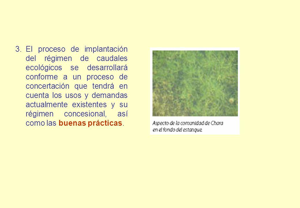 El proceso de implantación del régimen de caudales ecológicos se desarrollará conforme a un proceso de concertación que tendrá en cuenta los usos y demandas actualmente existentes y su régimen concesional, así como las buenas prácticas.