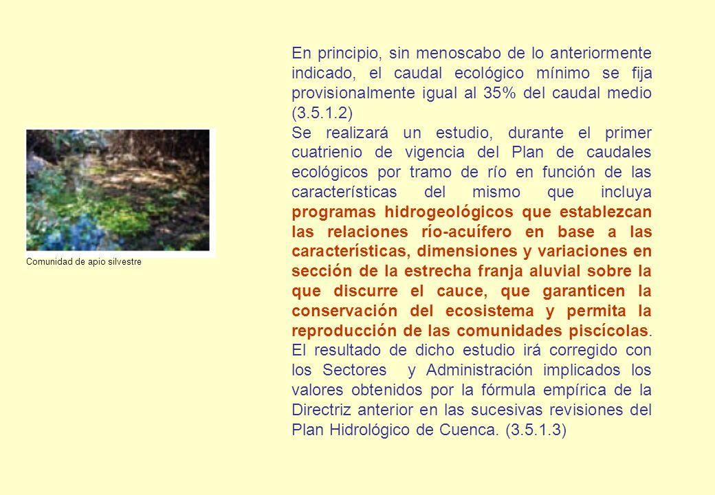 En principio, sin menoscabo de lo anteriormente indicado, el caudal ecológico mínimo se fija provisionalmente igual al 35% del caudal medio (3.5.1.2)