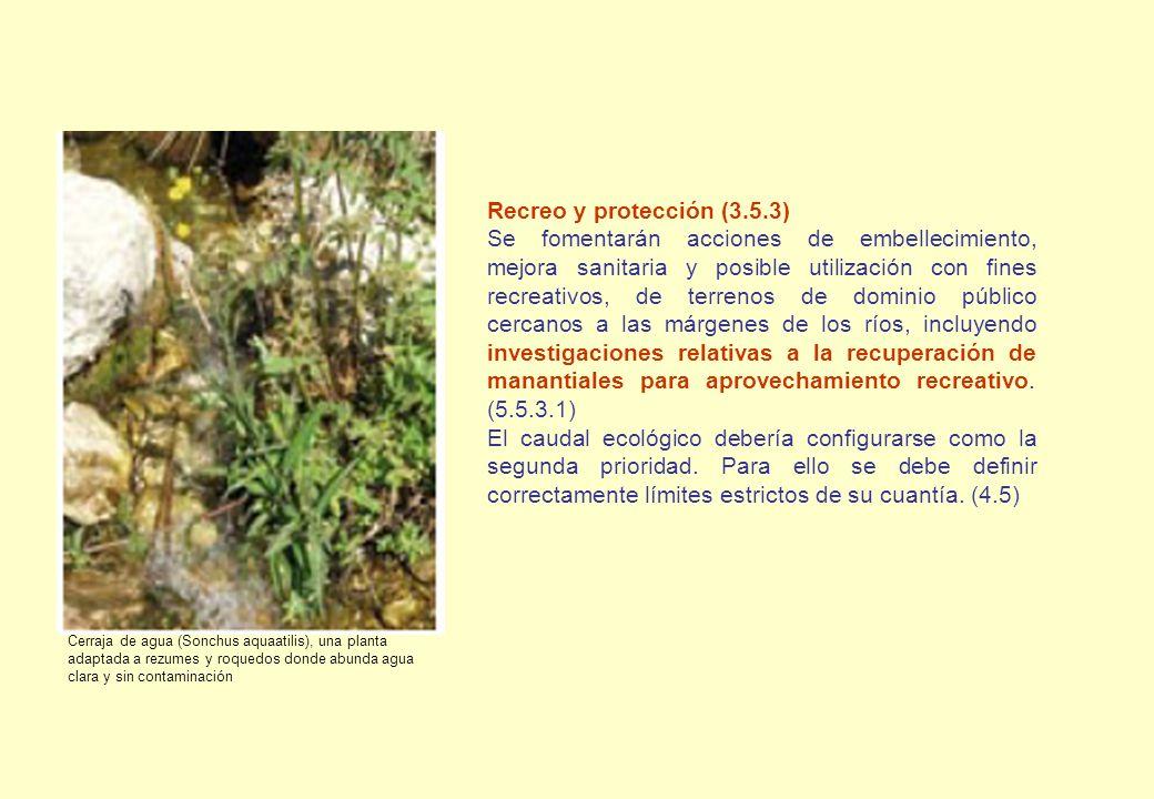 Recreo y protección (3.5.3)