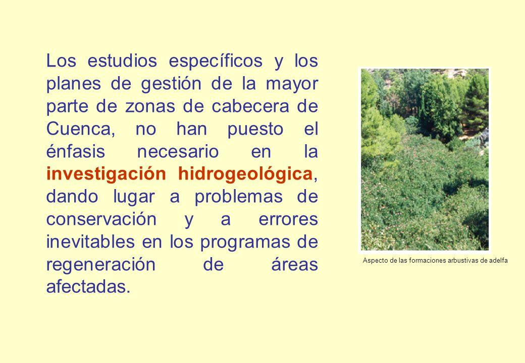 Los estudios específicos y los planes de gestión de la mayor parte de zonas de cabecera de Cuenca, no han puesto el énfasis necesario en la investigación hidrogeológica, dando lugar a problemas de conservación y a errores inevitables en los programas de regeneración de áreas afectadas.