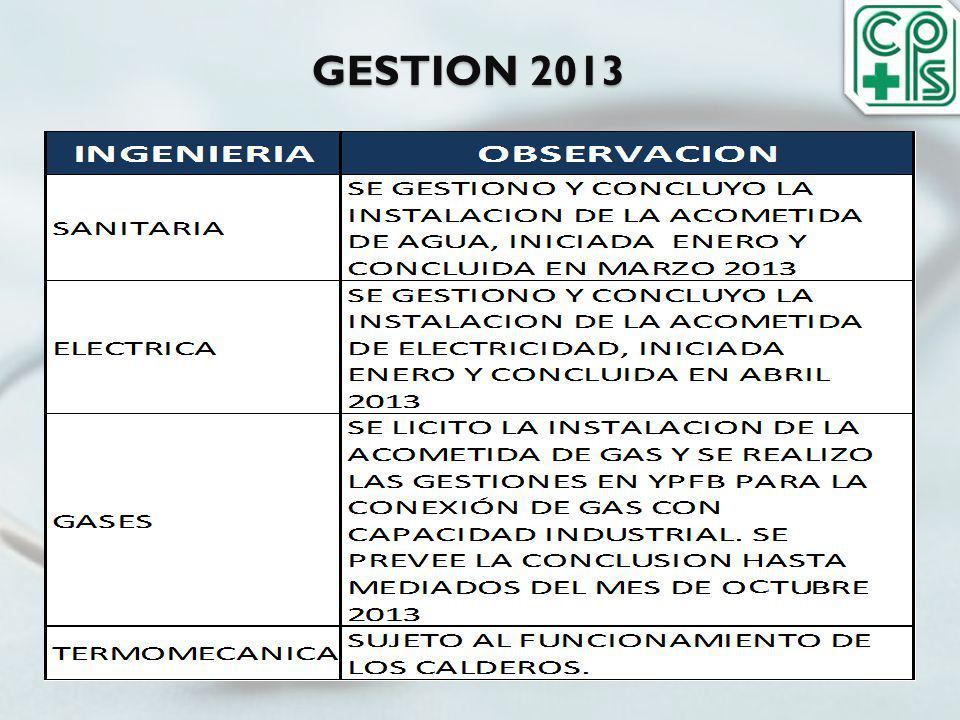 GESTION 2013