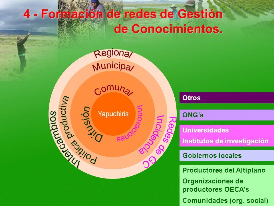 4 - Formación de redes de Gestión de Conocimientos.