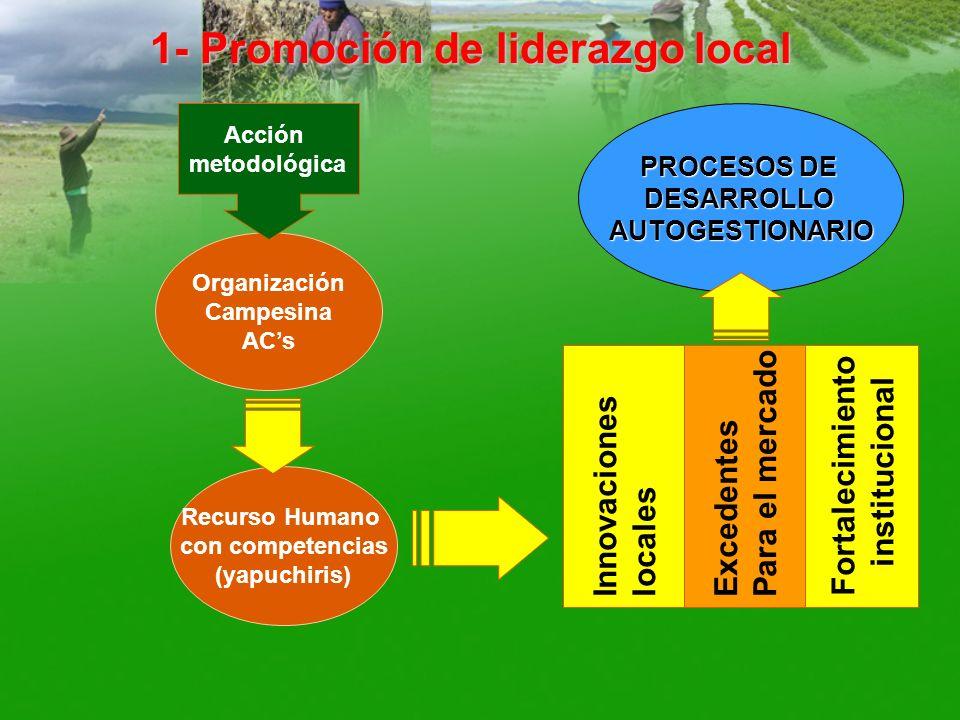 1- Promoción de liderazgo local