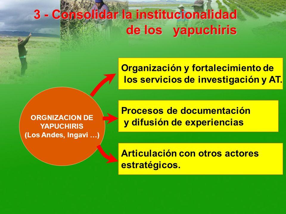 3 - Consolidar la institucionalidad de los yapuchiris