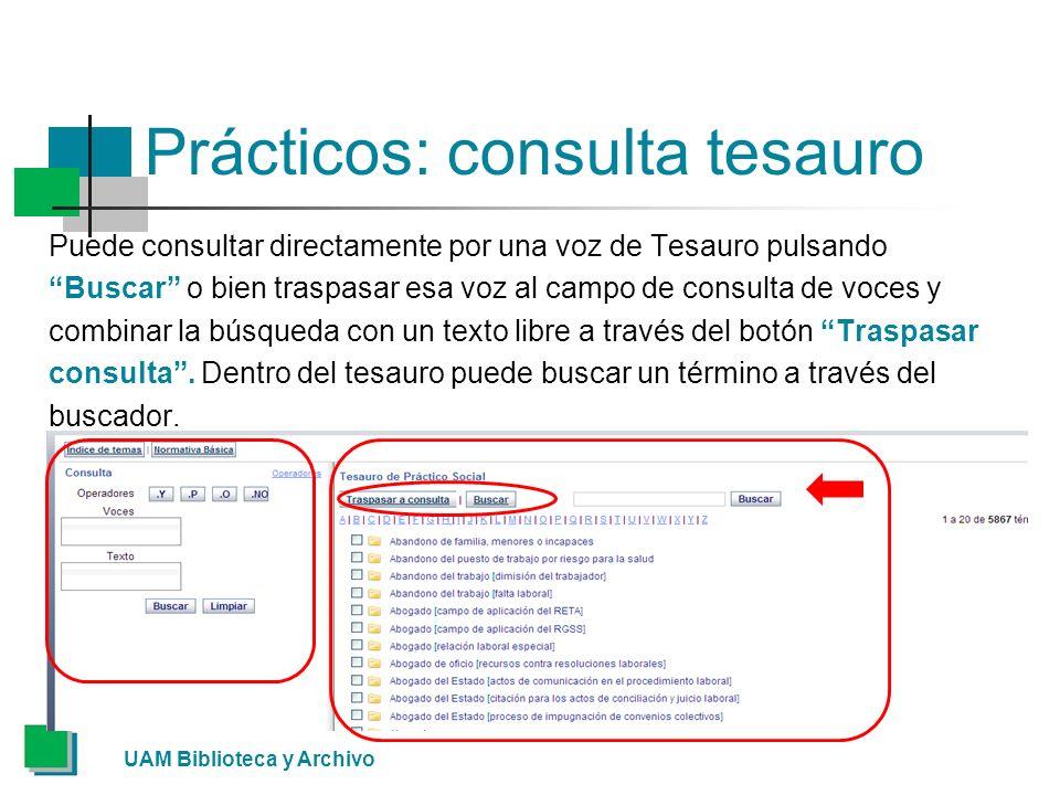 Prácticos: consulta tesauro