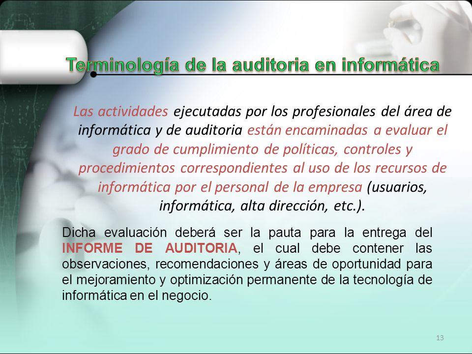 Terminología de la auditoria en informática