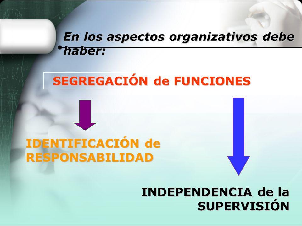 SEGREGACIÓN de FUNCIONES