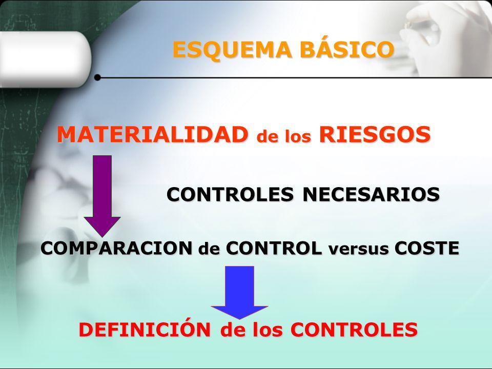ESQUEMA BÁSICO MATERIALIDAD de los RIESGOS