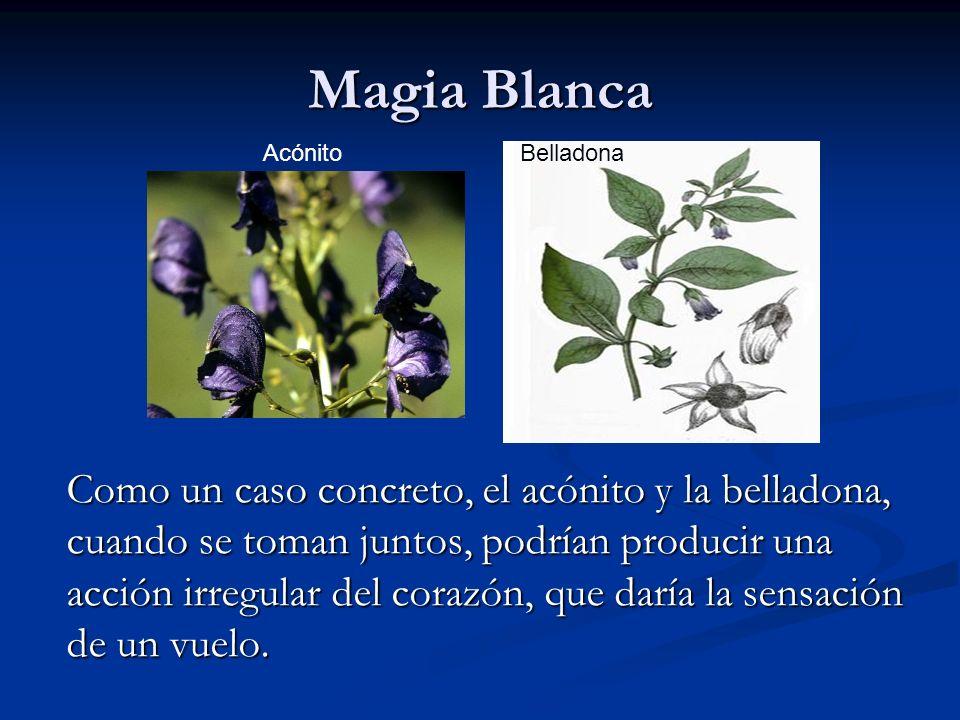Magia Blanca Acónito. Belladona.
