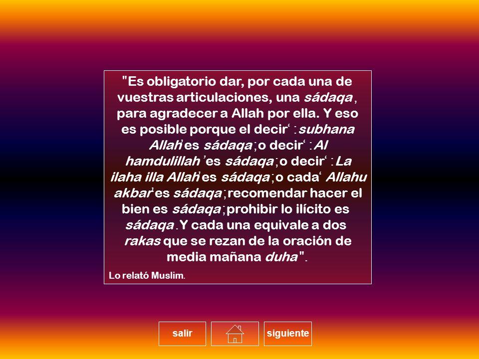Es obligatorio dar, por cada una de vuestras articulaciones, una sádaqa, para agradecer a Allah por ella. Y eso es posible porque el decir: 'subhana Allah'es sádaqa; o decir: 'Al hamdulillah' es sádaqa; o decir: 'La ilaha illa Allah'es sádaqa; o cada 'Allahu akbar'es sádaqa; recomendar hacer el bien es sádaqa; prohibir lo ilícito es sádaqa. Y cada una equivale a dos rakas que se rezan de la oración de media mañana duha.