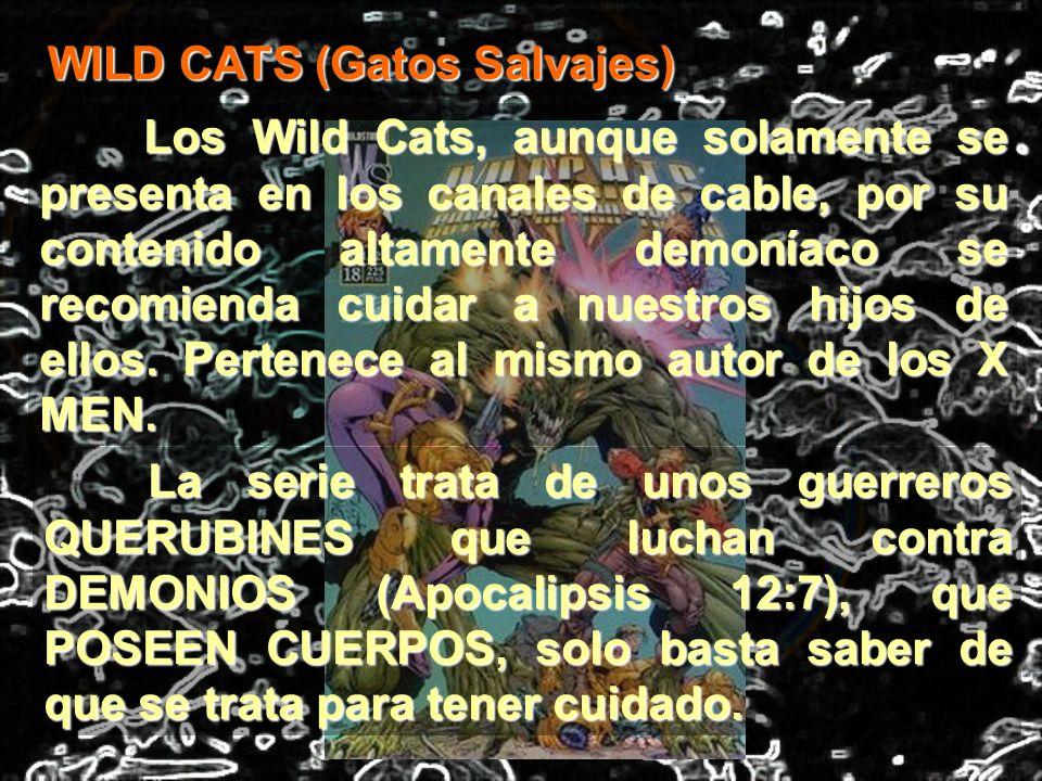 WILD CATS (Gatos Salvajes)