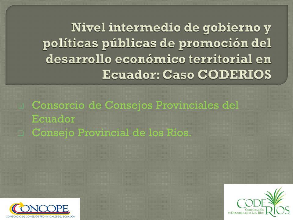 Nivel intermedio de gobierno y políticas públicas de promoción del desarrollo económico territorial en Ecuador: Caso CODERIOS