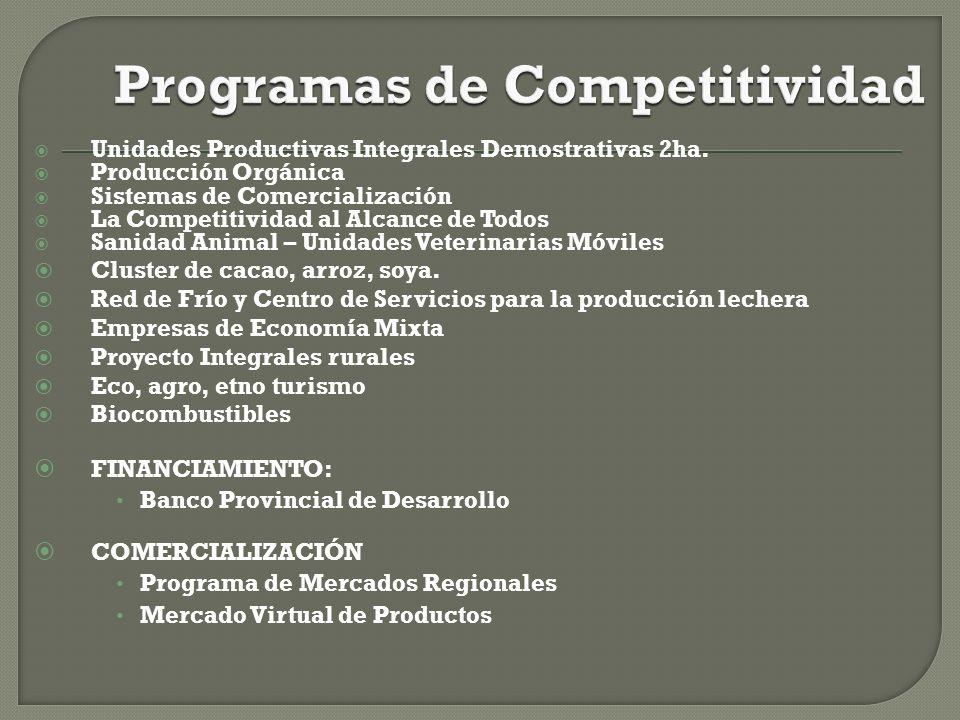 Programas de Competitividad