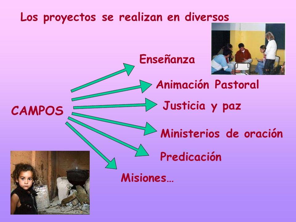 CAMPOS Los proyectos se realizan en diversos Enseñanza