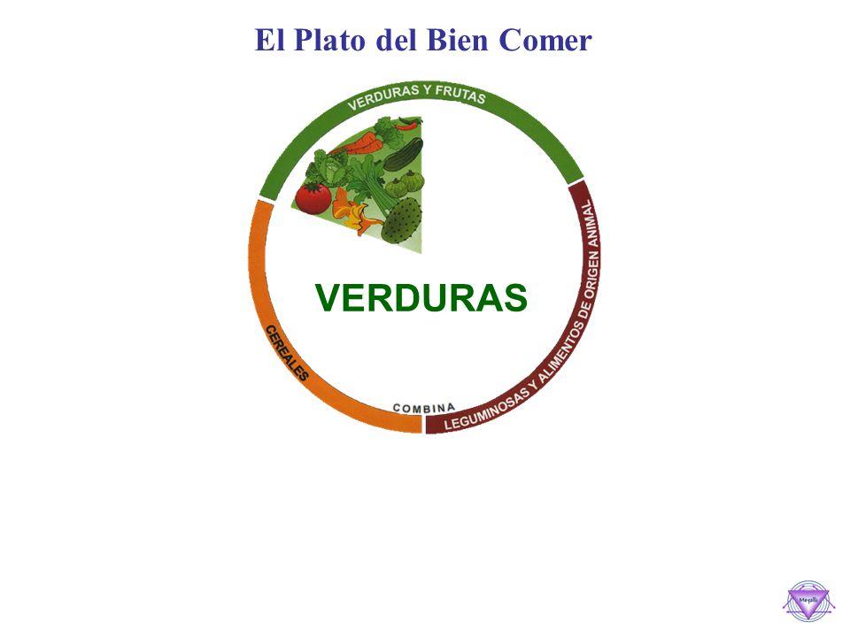 El Plato del Bien Comer VERDURAS
