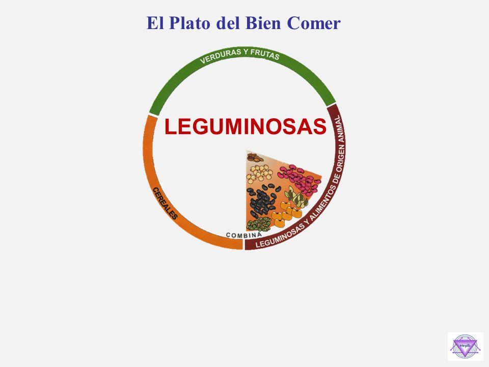 El Plato del Bien Comer LEGUMINOSAS