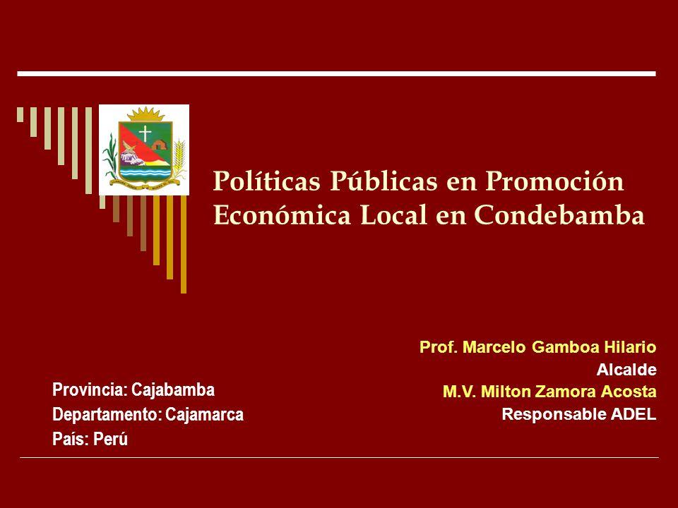 Políticas Públicas en Promoción Económica Local en Condebamba