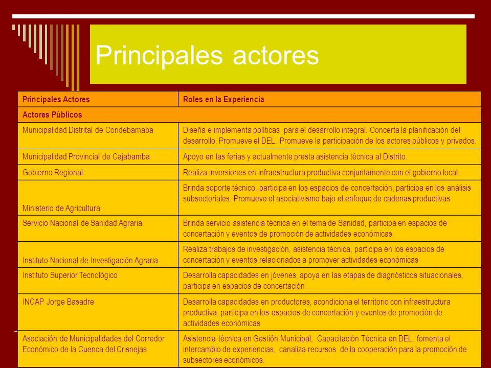 Principales actores Principales Actores Roles en la Experiencia
