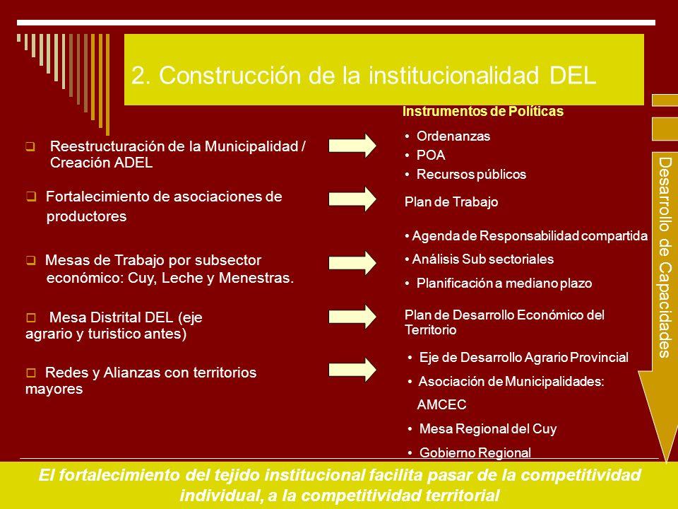 2. Construcción de la institucionalidad DEL