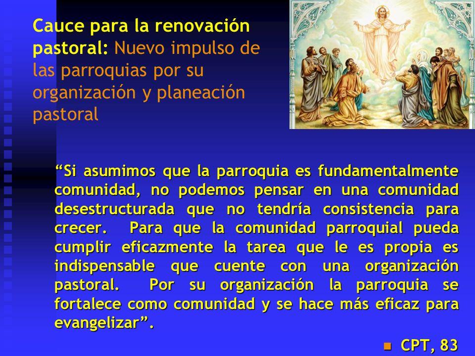 Cauce para la renovación pastoral: Nuevo impulso de las parroquias por su organización y planeación pastoral