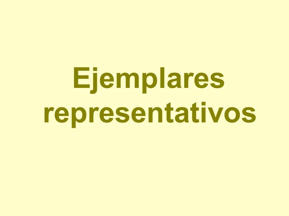 Ejemplares representativos