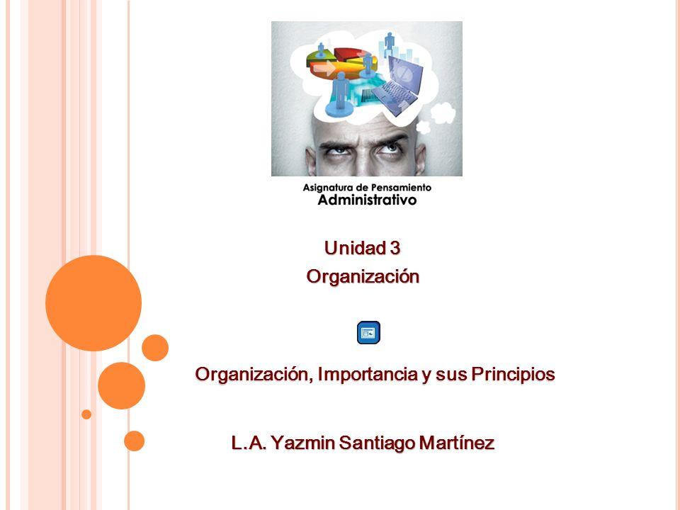 Organización, Importancia y sus Principios