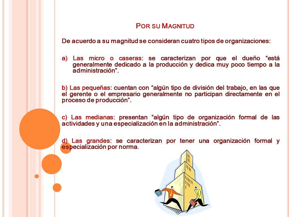 Por su Magnitud De acuerdo a su magnitud se consideran cuatro tipos de organizaciones:
