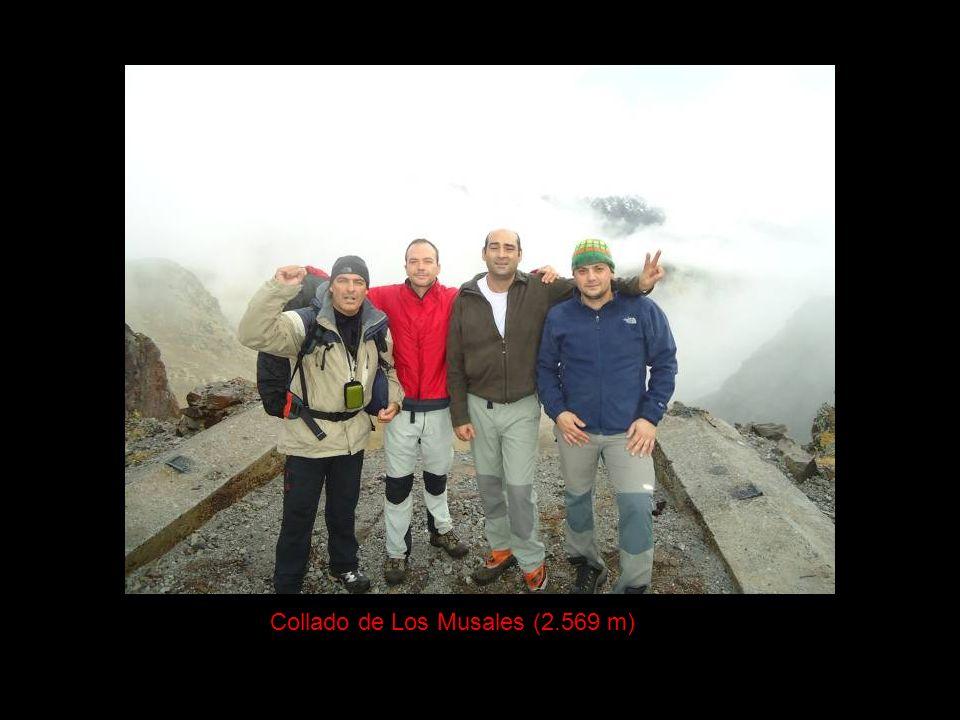 Collado de Los Musales (2.569 m)