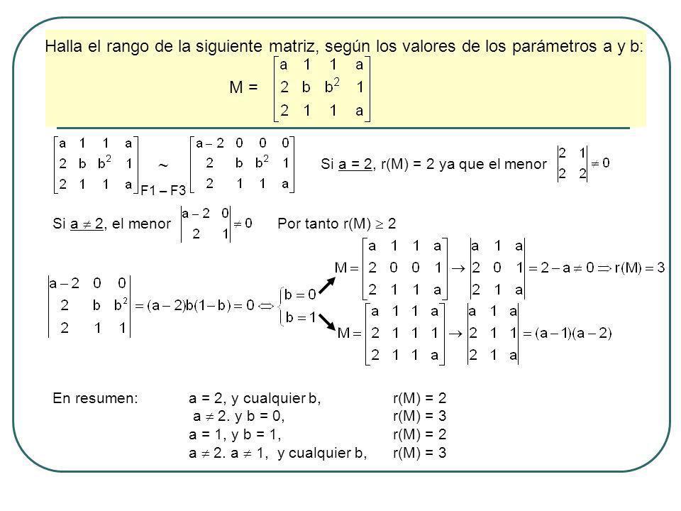 Halla el rango de la siguiente matriz, según los valores de los parámetros a y b: