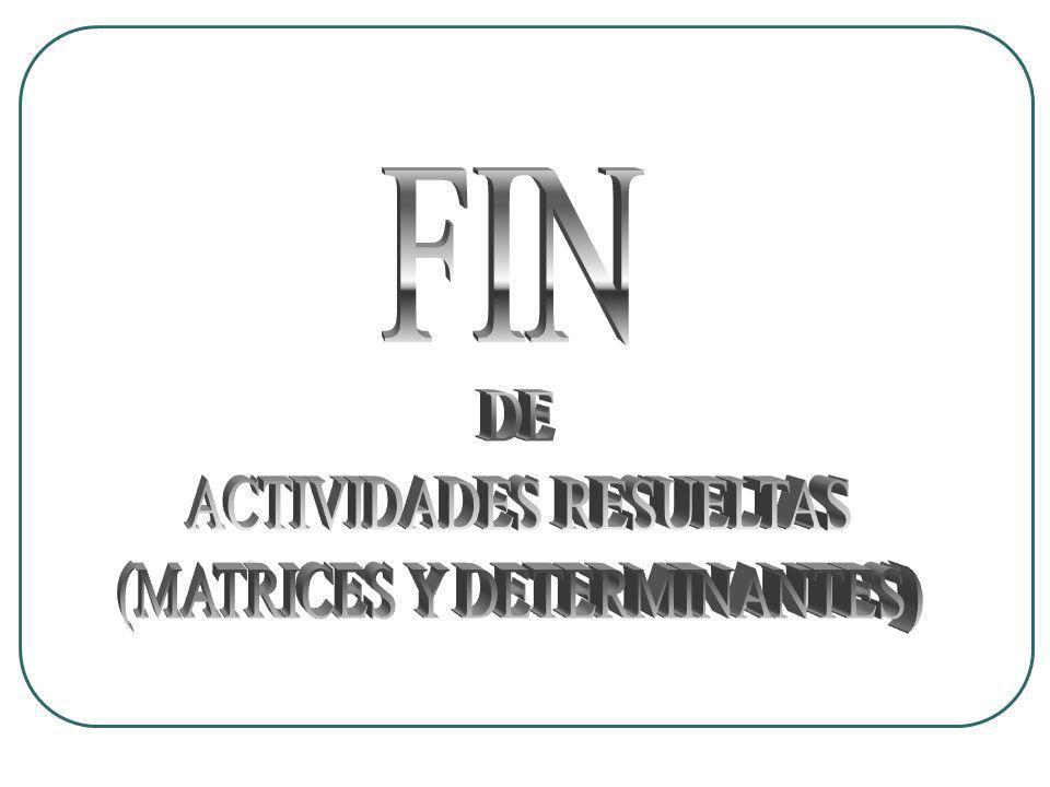 FIN DE ACTIVIDADES RESUELTAS (MATRICES Y DETERMINANTES)