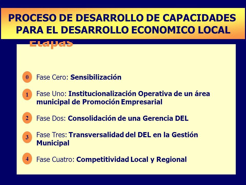 Etapas PROCESO DE DESARROLLO DE CAPACIDADES