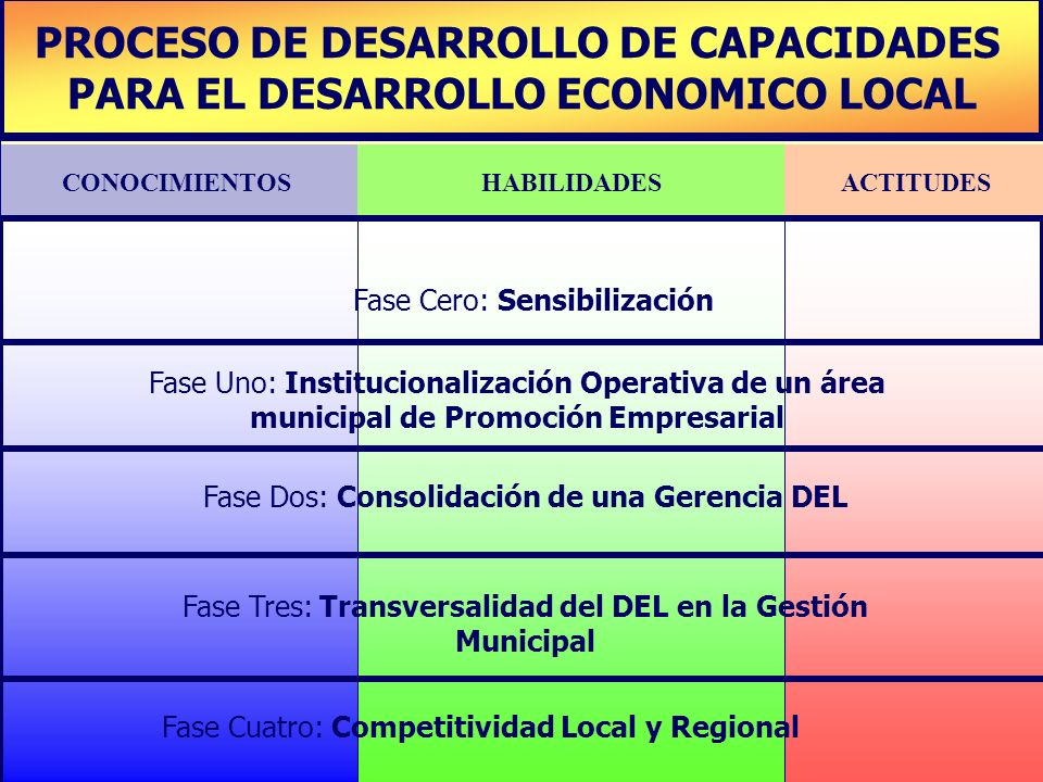 PROCESO DE DESARROLLO DE CAPACIDADES