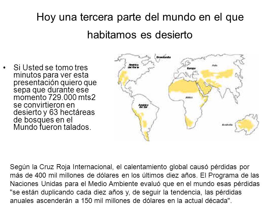 Hoy una tercera parte del mundo en el que habitamos es desierto