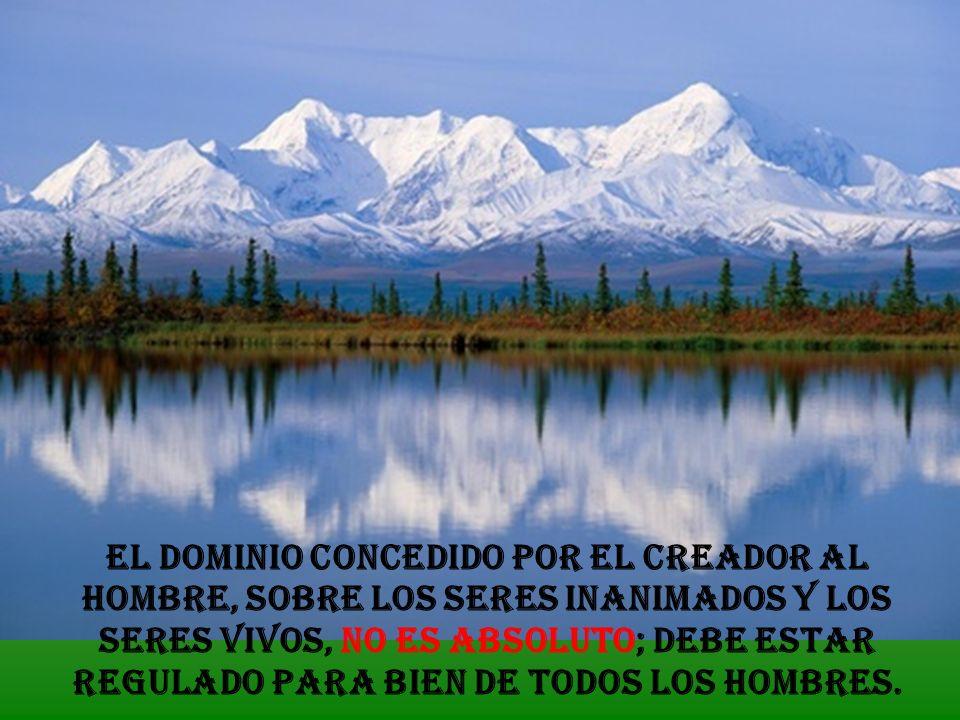 El dominio concedido por el Creador al hombre, sobre los seres inanimados y los seres vivos, no es absoluto; debe estar regulado para bien de todos los hombres.