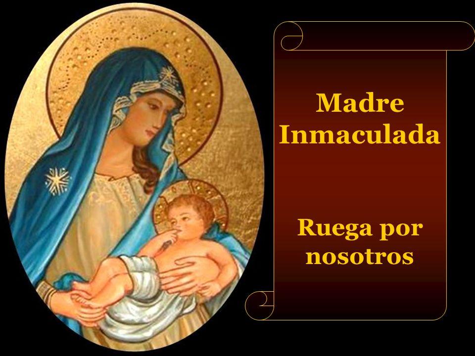 Madre Inmaculada Ruega por nosotros