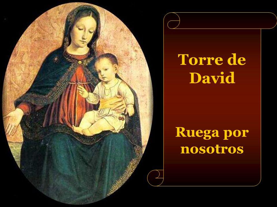 Torre de David Ruega por nosotros