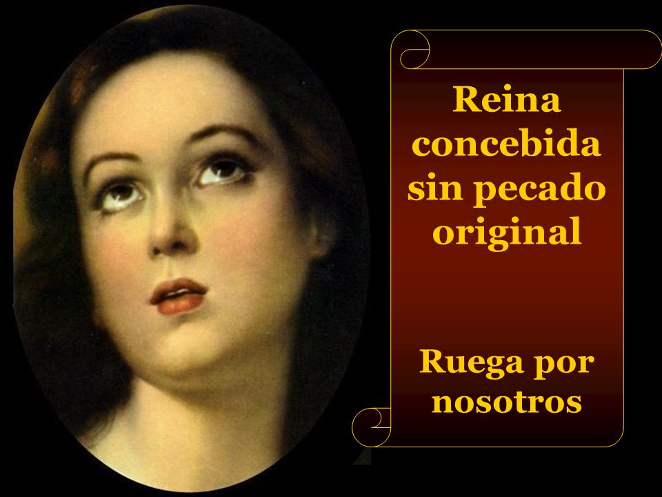 Reina concebida sin pecado original