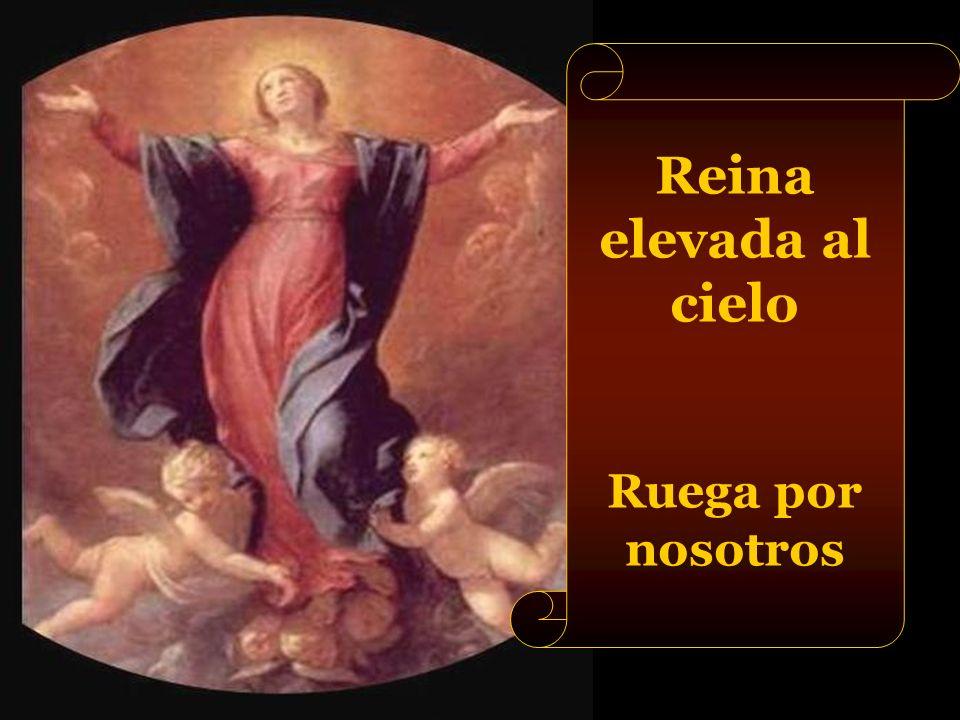Reina elevada al cielo Ruega por nosotros