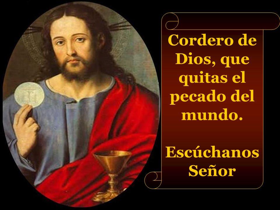 Cordero de Dios, que quitas el pecado del mundo.