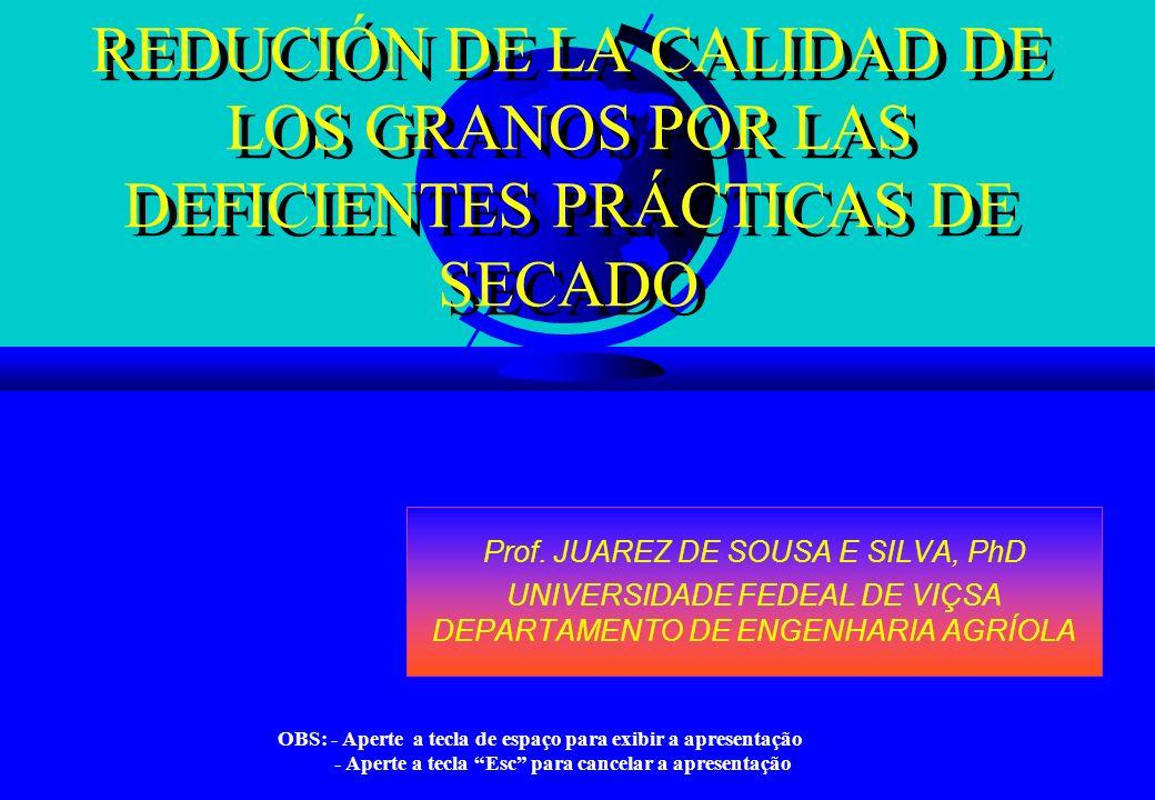 REDUCIÓN DE LA CALIDAD DE LOS GRANOS POR LAS DEFICIENTES PRÁCTICAS DE SECADO