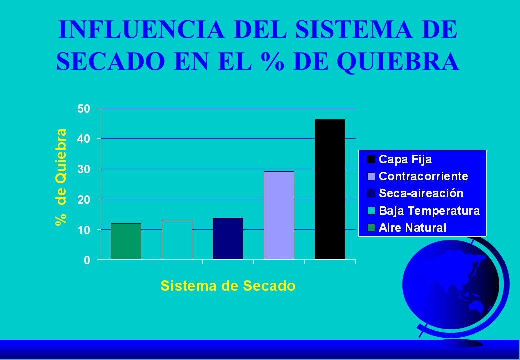 INFLUENCIA DEL SISTEMA DE SECADO EN EL % DE QUIEBRA