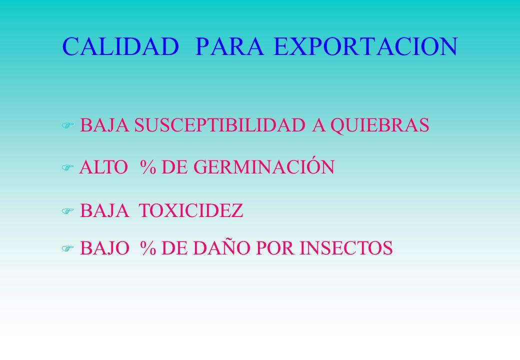 CALIDAD PARA EXPORTACION